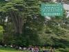 한-인니산림센터, '인도네시아 임업동향' 제7호 발간