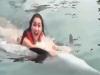 인니 연예인, 돌고래 지느러미 잡고 수영…'동물 학대' 뭇매