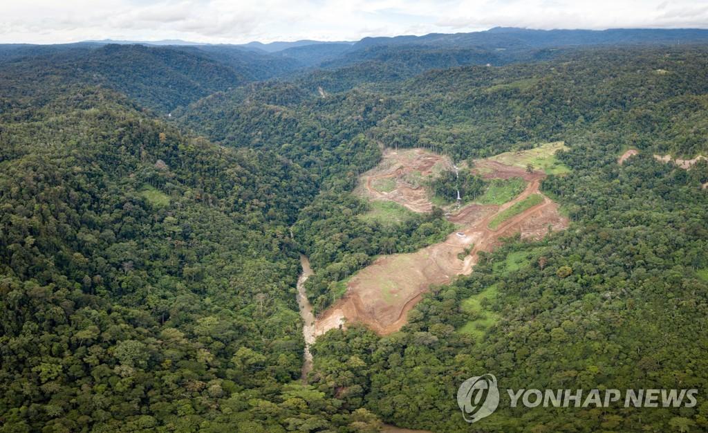 15일 오랑우탄 보존지역.jpg