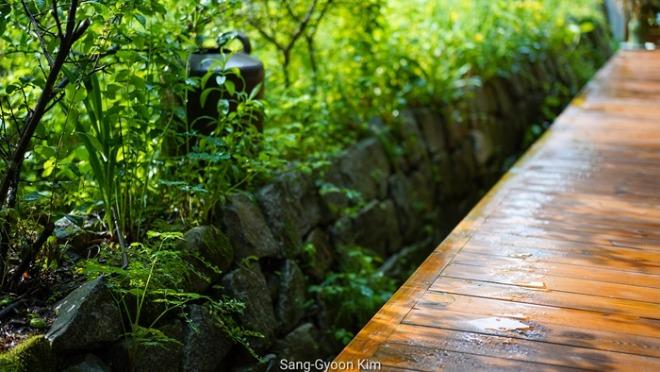 14일 식물원카페.jpg