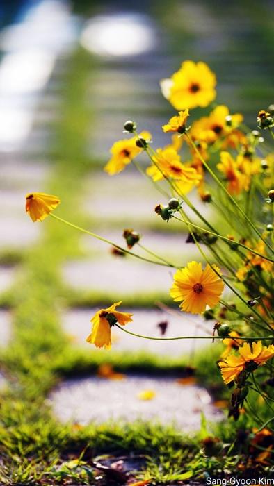 8일 식물원카페.jpg